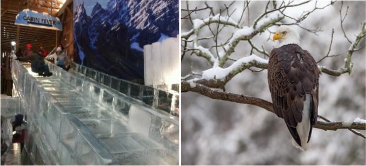 winteractivities