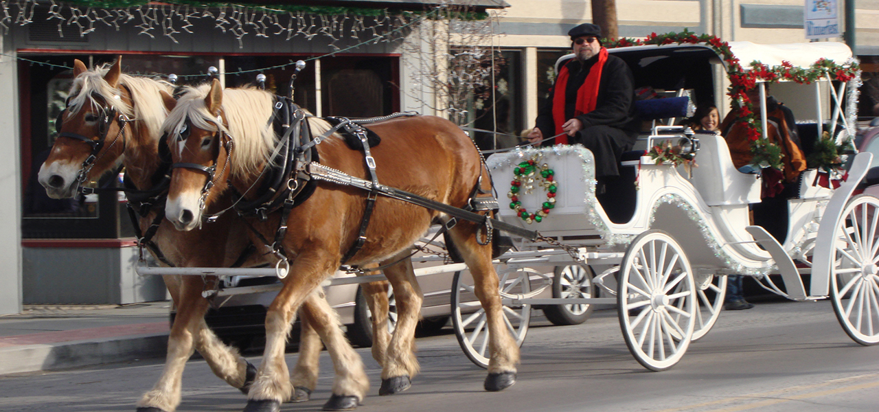 Hawley Winterfest Horse and Carriage